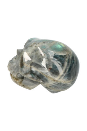 Labradoriet realistische kristallen schedel 9 cm 383 gram