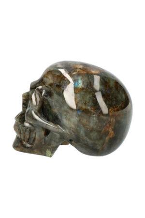 Labradoriet realistische kristallen schedel 12.5 cm 1.4 kg