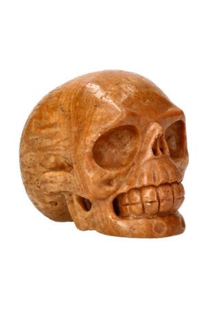 Versteend hout realistische kristallen schedel 10.5 cm 876 gram
