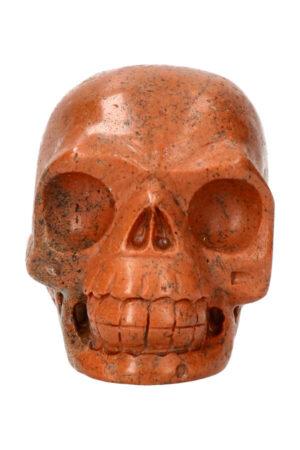 Versteend hout realistische kristallen schedel 8 cm 379 gram