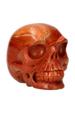 Versteend hout realistische kristallen schedel 10.5 cm 855 gram