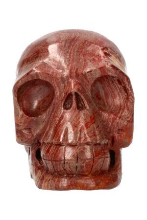 Versteend hout realistische kristallen schedel 10.5 cm 778 gram