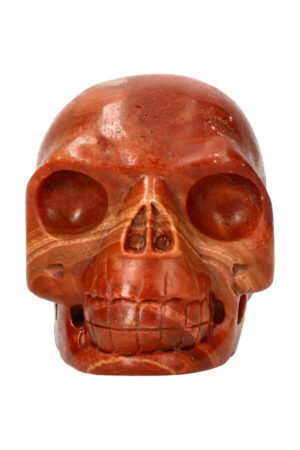 Versteend hout realistische kristallen schedel 11 cm 938 gram