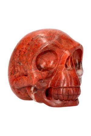 Versteend hout realistische kristallen schedel 10.5 cm 894 gram