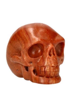 Versteend hout realistische kristallen schedel 8 cm 401 gram