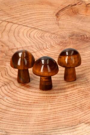 Tijgeroog paddestoeltje 2.1 cm