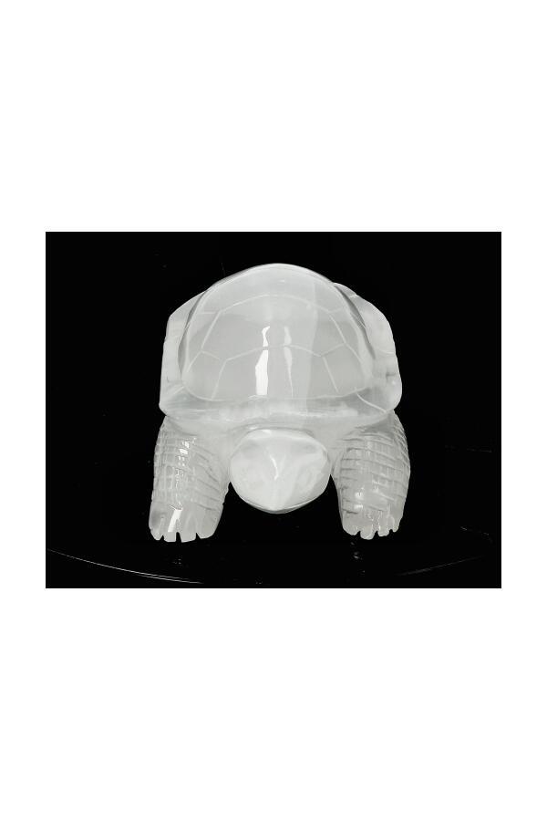 Seleniet schildpad, 14.1 cm, 351 gram