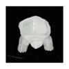 Seleniet schildpad 10.1 cm 193 gram