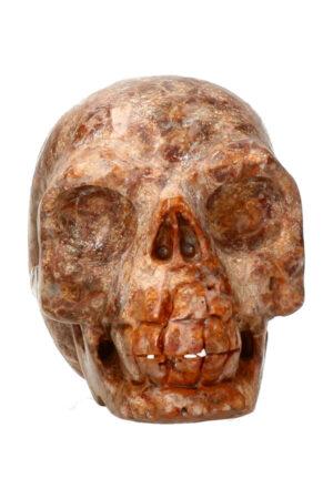 Oceaan Jaspis kristallen schedel 7.9 cm 329 gram