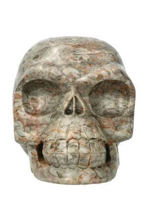 Picasso Jaspis realistische kristallen schedel 10.6 cm 886 gram