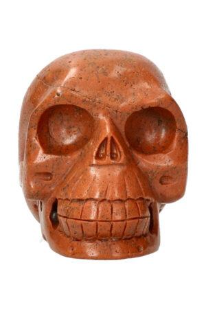 Versteend hout realistische kristallen schedel 10.6 cm 842 gram