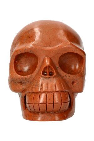 Versteend hout realistische kristallen schedel 13 cm 1.6 kg